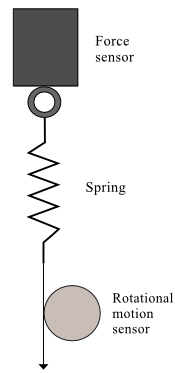 factors affecting spring constant