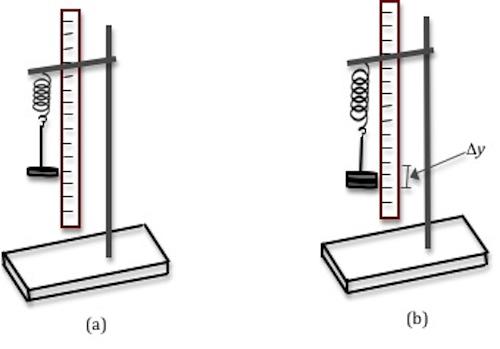 Lab 7 - Simple Harmonic Motion