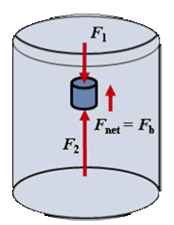 experiment archimedes principle lab Practice in university education this contribution describes the procedure of  developing the remote experiment—the archimedes´ principle—using the  internet.