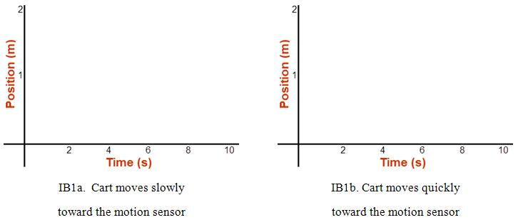 Velocity: A Bat\'s Eye View of Velocity