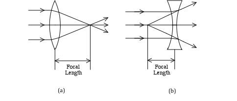 Lab 6 - Optics