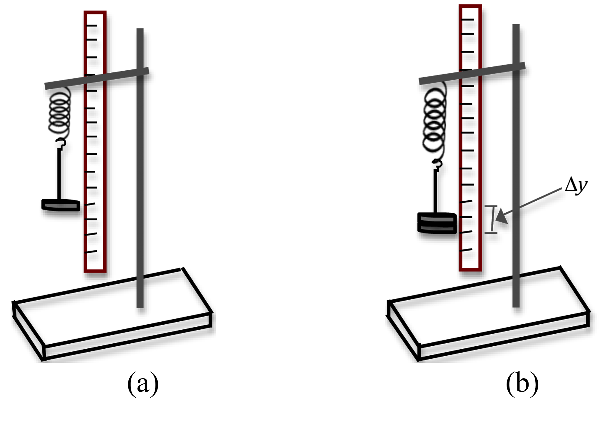 a diagram of 1996 lincoln town car construct a diagram of a mass hanging from a spring scale #13
