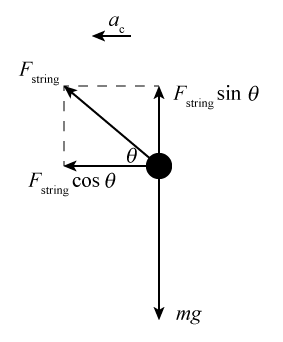 Force and acceleration in circular motion a free body diagram of the ball has a vector m g pointing down and a vector ccuart Image collections