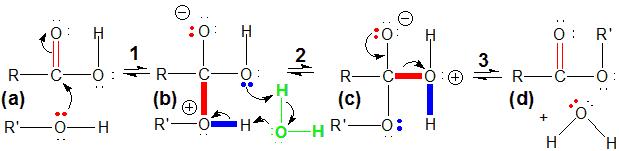 Chapter 13 – Organic Chemistry