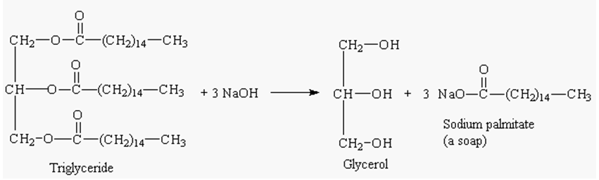 Experiment 10 Hydrolysis Of Glycerol Tristearate Preparation Of Soap